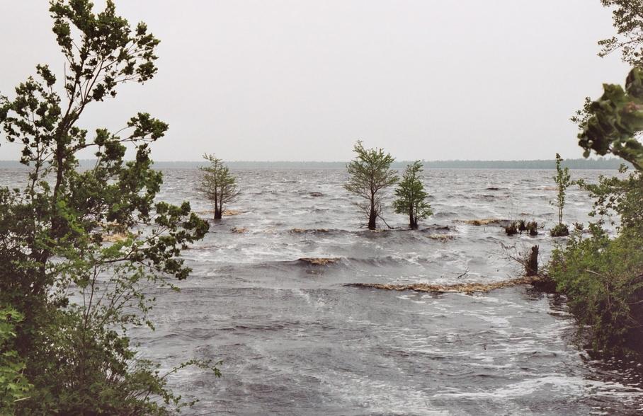 Lake Drummond Norfolk