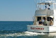 Gulf Fishing Trip